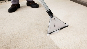 Carpet Cleaning by Steam